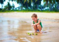Het leuke jonge geitje, jongen heeft een groep groene zeeëgels op zandig strand gevonden Stock Afbeelding