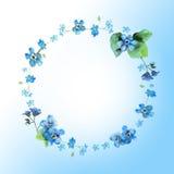 Het leuke kader van de waterverf cirkelbloem Achtergrond met watercolo Stock Afbeeldingen