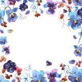 Het leuke kader van de waterverf cirkelbloem Achtergrond met waterverf blauwe pansies Stock Foto