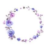 Het leuke kader van de waterverfbloem Achtergrond met blauwe rozen Royalty-vrije Stock Foto's