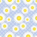 Het leuke klassieke madeliefje bloeit naadloos patroon vector illustratie