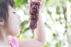 Het leuke meisje bekijkt bossen van rode druiven Royalty-vrije Stock Foto's