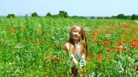 Het leuke meisje spelen in de rode zonnige dag van het papaversgebied, langzame motie stock videobeelden