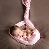 Het leuke meisje van de slaap pasgeboren baby stock afbeeldingen