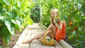 Het leuke meisje verzamelt gewassenkomkommers en tomaten in serre stock footage