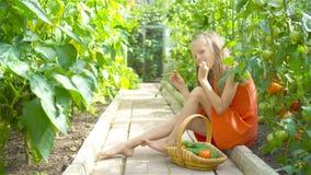 Het leuke meisje verzamelt gewassenkomkommers en tomaten in serre stock video