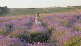 Het leuke meisje vlucht merrily en gelukkig springend onder lavendelgebied stock videobeelden