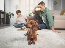 Het leuke puppy ontspannen op tapijt dichtbij eigenaars royalty-vrije stock afbeelding