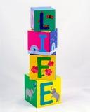 Het leven dat met blokken wordt gespeld Stock Fotografie