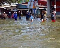 Het leven in de Vloed Stock Foto
