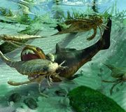 Het leven in een Voorhistorische Uit het Devoon Periodeoverzees 419 2 miljoen jaren geleden Stock Foto's