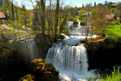 Het leven onder de watervallen Royalty-vrije Stock Foto