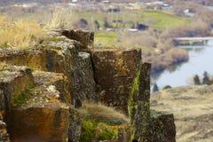 Het leven op de rotsen Stock Fotografie