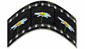 Het leven op Film Stock Foto