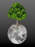Het leven op Maan Stock Afbeelding