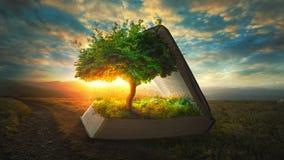 Het leven van de Bijbel stock afbeeldingen