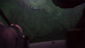 Het leven van de diepzeemening van het ertsaderskoraal van onderzeeër in de Vreedzame Oceaan van 300 m diepte stock videobeelden