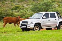 Het leven van de landbouwer Stock Fotografie