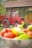 Het leven van het landbouwbedrijf Stock Afbeelding