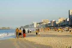 Het leven van het strand stock foto's