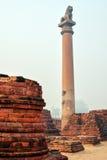 Het leven van India: Pijlers van Ashoka in Vaishali Royalty-vrije Stock Afbeelding