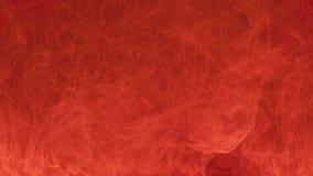 Het leven wikkelen de abstracte vlekken van de koraalkleur van inkt in het water bloem saaie wolk stock video