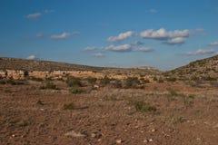 Het leven Woestijn Stock Afbeelding
