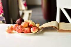 Het lezen van boeken is een gezonde mening, zijn de appelen gezond voedsel stock foto's