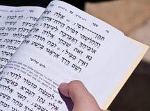 Het lezen van de Joodse Bijbel Jeruzalem Stock Foto's
