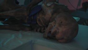 Het lichaam van buitenaardse vreemdeling ligt in geclassificeerd laboratorium, close-up stock video