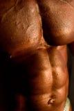 Het lichaam van de bodybuilder Stock Afbeeldingen