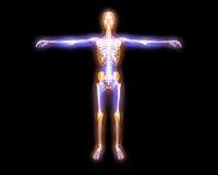 Het lichaam van de energie Stock Fotografie