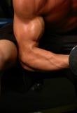 Het lichaam van de gymnastiek stock foto