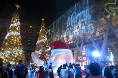 Het licht en de Kerstbomen verfraaien mooie Kerstmis en Nieuw jaar Stock Fotografie