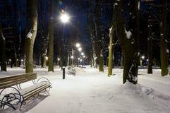 Het licht van de lantaarns in het de winterpark stock fotografie