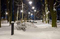 Het licht van de lantaarns in het de winterpark stock afbeeldingen
