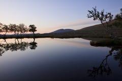 Het licht van de ochtend in de wildernis van Noorwegen Stock Foto's