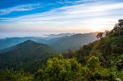 Het licht van de ochtend onder het bos op berg Royalty-vrije Stock Foto