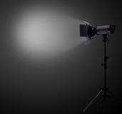 Het licht van de vlek Stock Afbeelding