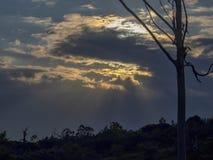 Het licht van de zon giet zijn stralen over het plateau stock foto