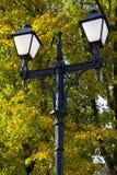 Het licht van het park Stock Afbeelding