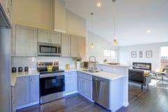 Het lichtgrijze binnenland van de keukenruimte met gewelfd plafond Royalty-vrije Stock Foto