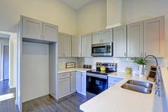Het lichtgrijze binnenland van de keukenruimte met gewelfd plafond Stock Foto's