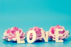 Het LIEFDEwoord en roze nam toe Stock Afbeeldingen