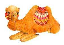 Het liggen kameel met heldere toebehoren wordt verfraaid die De illustratie van de waterverf Royalty-vrije Stock Fotografie