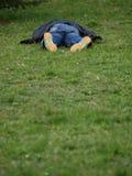 Het liggen op het gras stock foto's