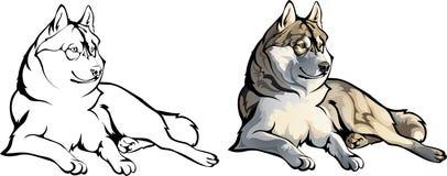 Het liggen wolf vector illustratie