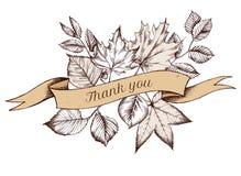 Het lintontwerp van de herfstbladeren met dankt u zingt Hand getrokken vectorillustratie royalty-vrije stock foto's