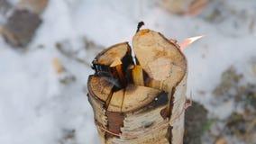 Het logboek brandt, close-up stock footage