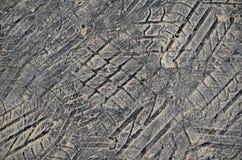 Het loopvlakafdruk van de band in asfalt Stock Afbeelding